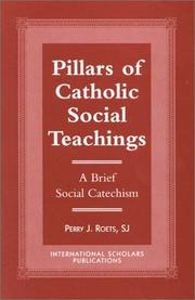 Cover of: Pillars of Catholic social teachings | Perry J. Roets
