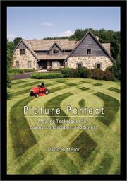 Cover of: Picture Perfect | David R. Mellor