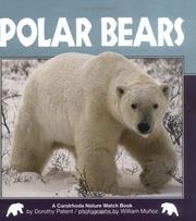 Cover of: Polar Bears (Nature Watch) | Dorothy Hinshaw Patent
