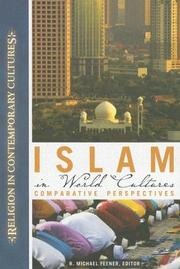 Cover of: Islam in World Cultures | R. Michael Feener