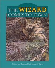 The Wizard Comes to Town by Mercer Mayer