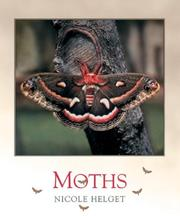 Cover of: Moths (Bugbooks) |