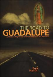 The road to Guadalupe by Eryk Hanut
