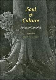 Cover of: Soul and Culture (Carolyn and Ernest Fay Series in Analytical Psychology)
