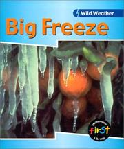 Cover of: Big Freeze (Wild Weather)