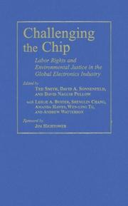 Cover of: Challenging the Chip |