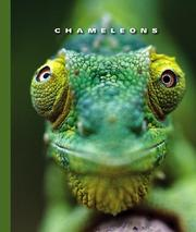 Cover of: Chameleons | Sophie Lockwood