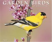 Cover of: Garden Birds 2008 Calendar | Willow Creek Press