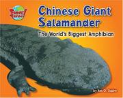 Cover of: Chinese Giant Salamander |