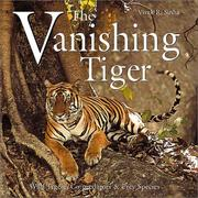 Cover of: The Vanishing Tiger