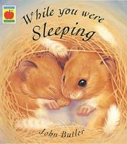 Cover of: While You Were Sleeping
