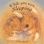Cover of: While You Were Sleeping (Little Orchard Board Book)