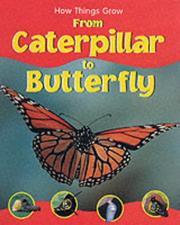 Cover of: From Caterpillar to Butterfly (How Things Grow)