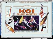 Cover of: An Essential Guide to Choosing Your Koi Colour Varieties
