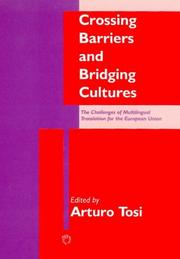 Cover of: Crossing Barriers and Bridging Cultures