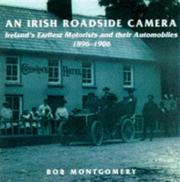 Cover of: An Irish roadside camera