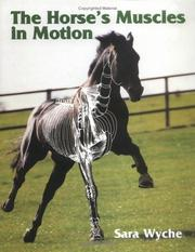 Cover of: Horses Muscles in Motion