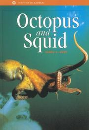 Cover of: Octopus and squid