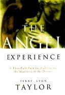 Cover of: The angel experience