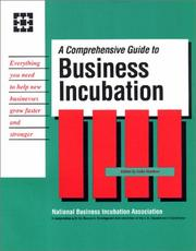 Cover of: A Comprehensive Guide to Business Incubation |