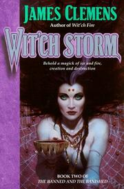Cover of: Wit'ch storm