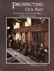 Cover of: Prospecting our past
