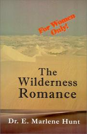 Cover of: The Wilderness Romance | E Marlene Hunt