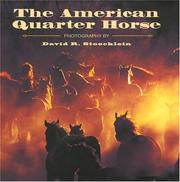 Cover of: The American Quarter Horse | Becky Prunty