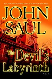 Cover of: The devil's labyrinth: A Novel
