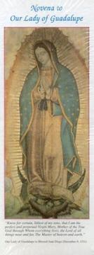 Cover of: Novena to Our Lady Guadalupe  Package | N/A