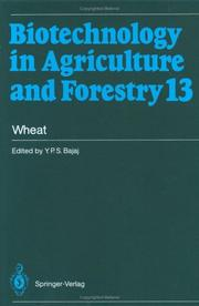 Cover of: Wheat