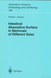 Cover of: Intestinal absorptive surface in mammals of different sizes | Robert L. Snipes