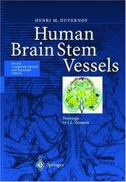 Cover of: Human brainstem vessels