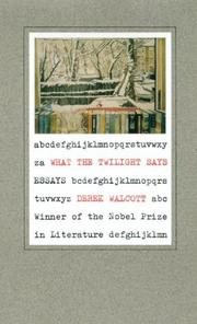 Cover of: What the twilight says: essays