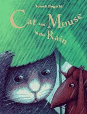 Cover of: Cat and mouse in the rain