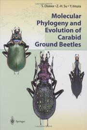 Cover of: Molecular phylogeny and evolution of carabid ground beetles