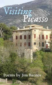 Cover of: Visiting Picasso