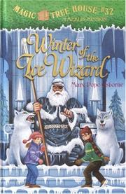 Cover of: Winter of the ice wizard