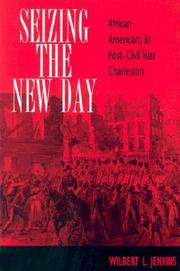 Cover of: Seizing the New Day | Wilbert L. Jenkins