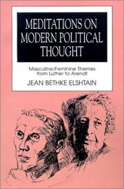 Cover of: Meditations on modern political thought