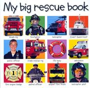 Cover of: My big rescue book
