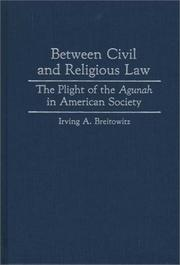 Cover of: Between civil and religious law | Irving A. Breitowitz