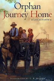 Cover of: Orphan journey home
