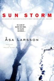 Cover of: Sun Storm