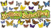 Cover of: 3-D Butterflies! Bulletin Board