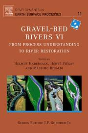 Gravel Bed Rivers 6, Volume 11 by
