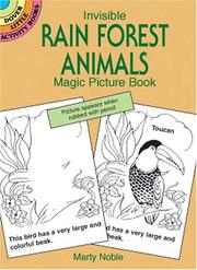 Cover of: Invisible Rain Forest Animals Magic Picture Book