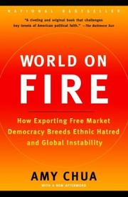 Cover of: World on Fire: how exporting free market democracy breeds ethnic hatred and global instability