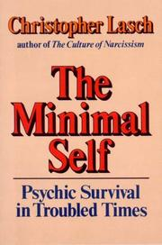 Cover of: The minimal self