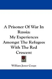 Cover of: A Prisoner Of War In Russia